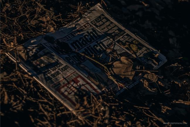 Bild, News Papers, Germany, Photo, Газета